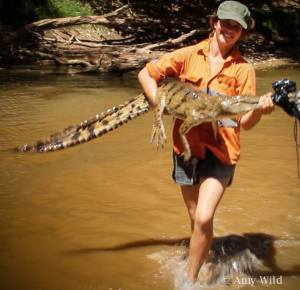 Crocodile Catching