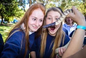 Reptile education