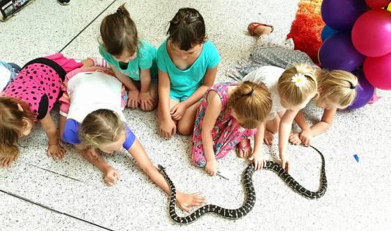 Morelia the Carpet Python