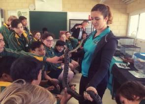 School Reptile Display
